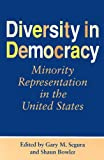 img - for Diversity in Democracy: Minority Representation in the United States (Race, Ethnicity, and Politics) book / textbook / text book