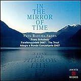 Schbert In the Mirror of Time [IMPORT]