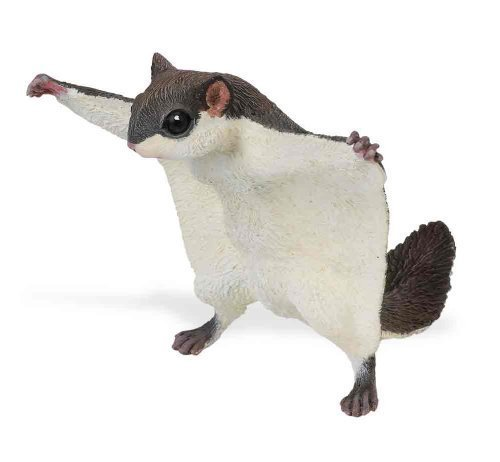 Flying Squirrel Plastic Replica<br>Safari Ltd