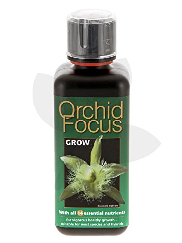 Orchid Focus Grow - 300 ml