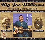 Big Joe Williams and the Stars of Mississippi Blues
