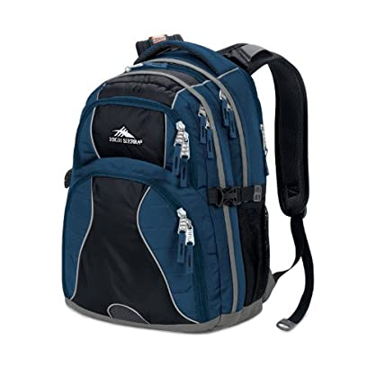 High Sierra Swerve Backpack