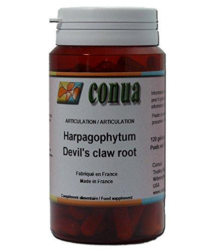 Harpagophytum Artiglio del diavolo Devil's Claw dolori reumatici muscolo scheletrici 120 capsule