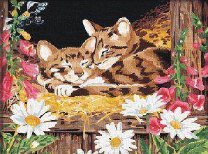 Paint by Number Kits - Two kittens Cat 16*20 inches
