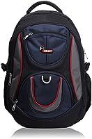 F Gear Polyester 29Litres Black Blue School Bag
