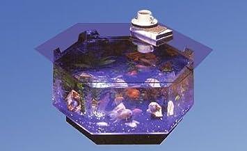 Long Octagon Aqua Coffee Table Aquarium