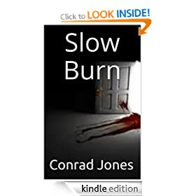 Slow Burn Book iii Detective Alec Ramsay Series