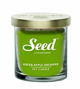 Soy Basics Seed Soy Candle, Green Apple Orchard, 4.5-Ounce (Pack of 3)