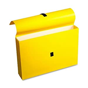 Wilson Jones ColorLife File Wallets with Velcro Grippers, 3.5 Inch Expansion, 10 x 15 Inches, Yellow, 10 Wallets Per Box (WCC722-4Y)