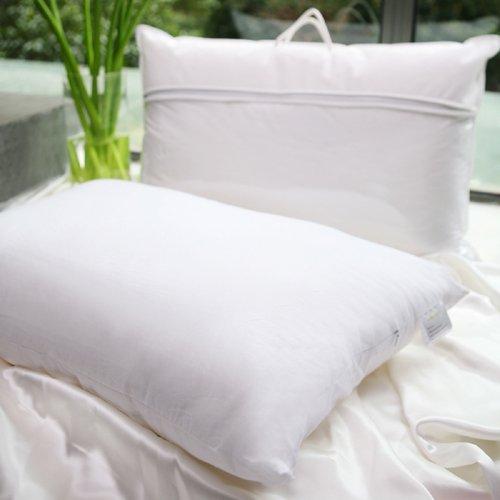 Jasmine Silk Luxury 100 Mulberry Silk Filled Pillow 50cm X