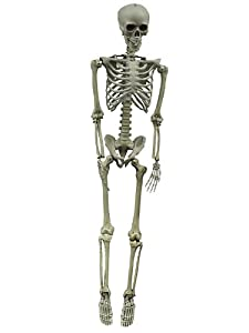 Hanging Skeleton Life Size 60in Prop
