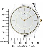 Skagen Men's 233LGSC Two-Tone Mesh Bracelet Watch