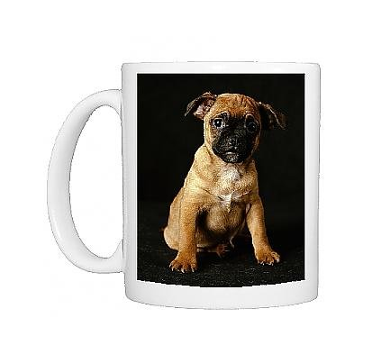 Photo Mug Of Puggle Dog - A Crossbreed Between A Beagle A A Pug, Puppy From Ardea Wildlife Pets front-896397
