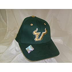 South Florida Bulls USF NCAA Youth 1-Fit Hat