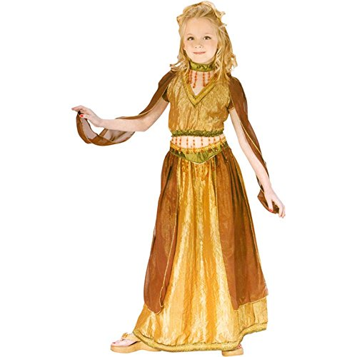 Child's Belly Dancer Halloween Costume (Small 4-6)