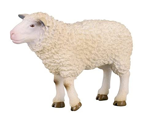 CollectA Sheep Figure by CollectA (English Manual)