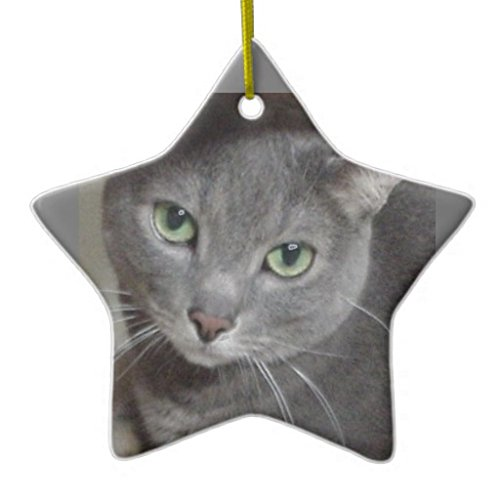 Russian Blue Gray Cat DoubleSided Star Ceramic Christmas Ornament (Russian Blue Cat Ornament compare prices)