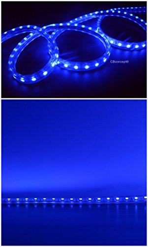 120 Volt Led String Lights : CBConcept 30 Feet 120 Volt LED SMD3528 Flexible Flat LED Strip Rope Light - [Christmas Lighting ...