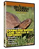 PVL LAND TURTLE & TORTOISE DVD
