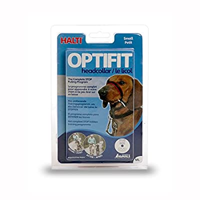 The Company of Animals Halti Optifit