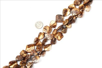 15x20mm freefrom brown Sea shell beads strand 15