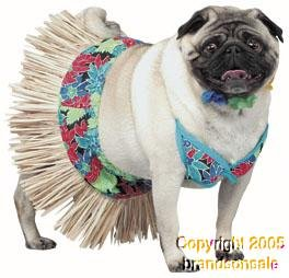 Pet Hawaiian Girl Dog Costume For X-small Dogs
