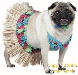 Pet Hawaiian Girl Dog Costume For X-small Dogs