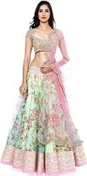 Bikaw Women's Net Lehenga Choli (RS_floral print_Multicolor_Large)