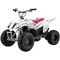 Razor 500 DLX Dirt Quad Bike