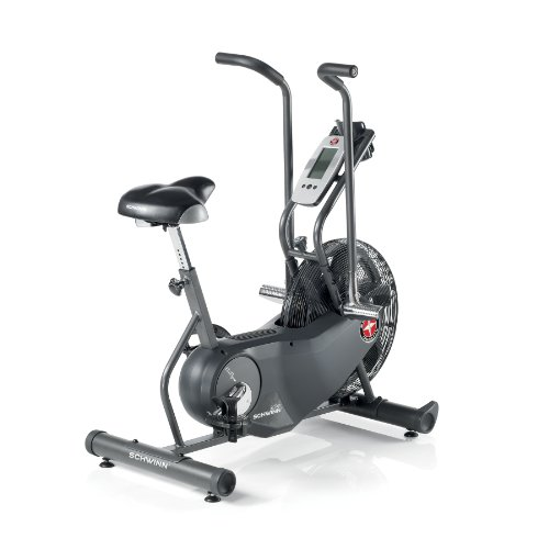 Schwinn AD6 Airdyne Exercise Bike (Black)
