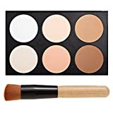 Five Bull Professional 6 Warm Color Cosmetic Foundation Concealer Camouflage Contour Makeup Palette Set Face Contouring Kit With Makeup Brushes (6 Color)