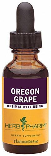 Herb Pharm Oregon Grape Root Extract - 1 Ounce (Mahonia Aquifolium Oregon Grape compare prices)