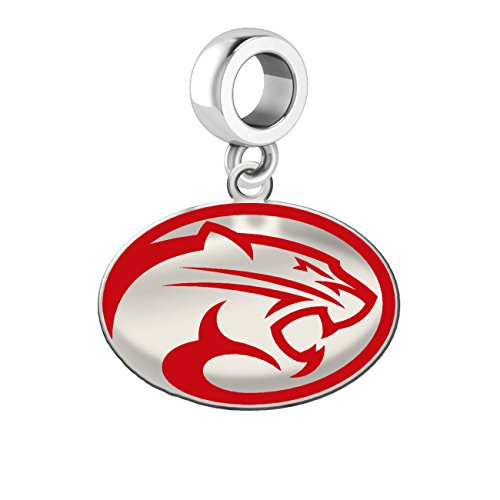 Houston Cougars Silver Logo and School Color 1/2