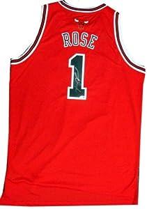 Derrick Rose Signed PSA/DNA Chicago Bulls Jersey-Swingman