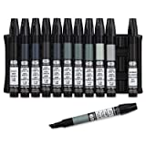 The Original Chartpak AD Markers, Tri-Nib, 12 Assorted Cool Grey Colors in Plastic Carrying Case, 1 Each (AD12SETCG) (Tamaño: 12 Cool Grey Colors)