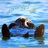 ラッコのきもち―sea angel (Seiseisha minibook―sea angel)