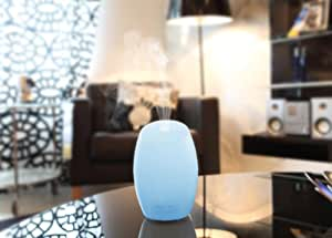 Ultransmit Aroma Vase Diffuser Aromatherapy Air Purifier Essential Oil Diffuser Ultrasonic Air Humidifier with Night Light