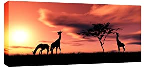 LARGE AFRICA SUNSET GIRAFFES CANVAS PICTURE mounted and ready to hang 44 x 20 inches (113 x 52 cm)