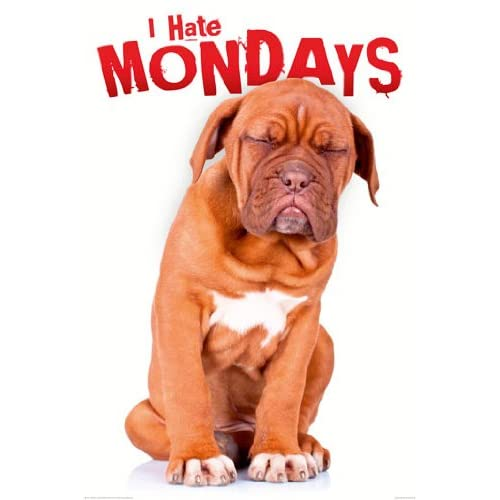 Amazon I Hate Mondays Dog Puppy Funny Cute Office