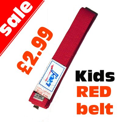 Martial arts Red Belt For Kids Judo Karate Taekwondo 200cm