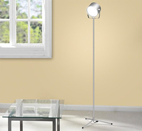 oxyled f10 remote control led floor lamp for living