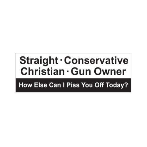 Straight Conservative Christian Gun Owner - Color Sticker - Decal - Die Cut (Gun Owner Decals compare prices)