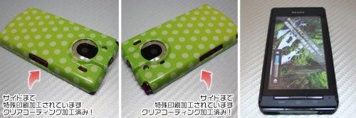 [docomo REGZA Phone T-01C専用]特殊印刷ハードカバー クリアコーティング仕上げ[740ドットグラデーション2(グリーン×ホワイト)]