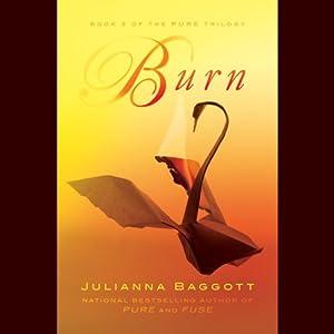 Burn Audiobook