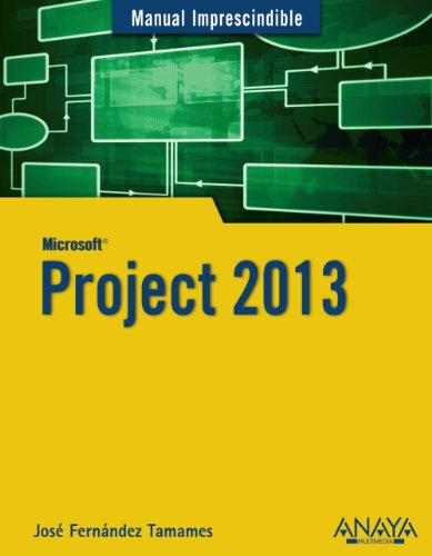 Project 2013 (Manuales Imprescindibles)