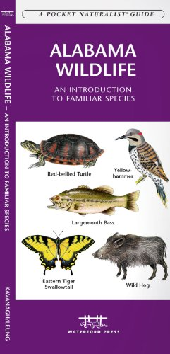 Alabama Wildlife: An Introduction to Familiar Species (A Pocket Naturalist® Guide)