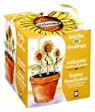 Sunflower Welcome Garden Greeting Seed Kit