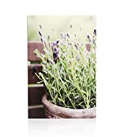 Lavender Outdoor Wall Art