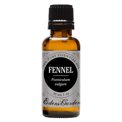 Fennel Sweet 100% Pure Therapeutic Grade Essential Oil by Edens Garden- 30 ml
