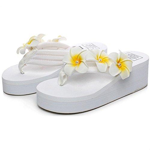 d2bb5ea94e1fe ... Langforth Women s Plumeria Platform Wedge Flip Flop Thong Sandals (8  B(M)